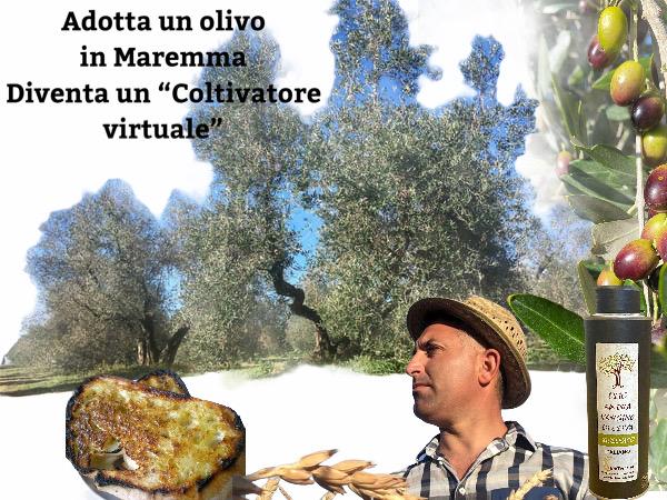Adotta un olivo per un anno e fai una vacanza